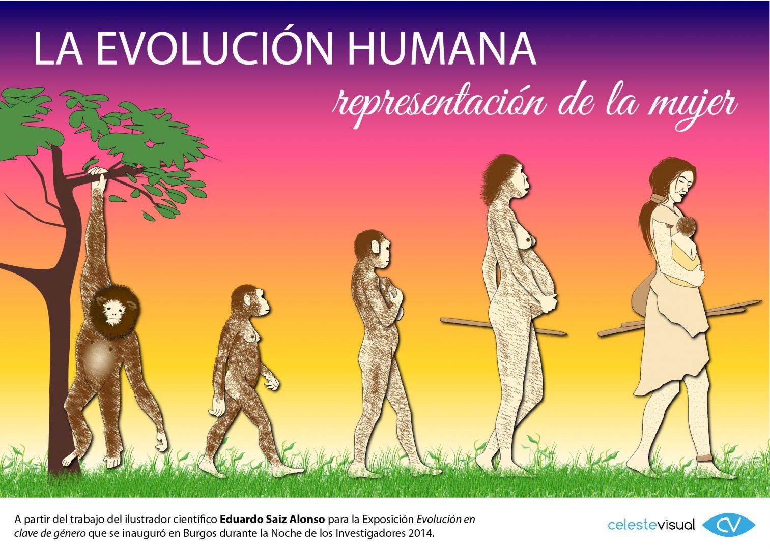 Evolución Humana - Representación de la Mujer