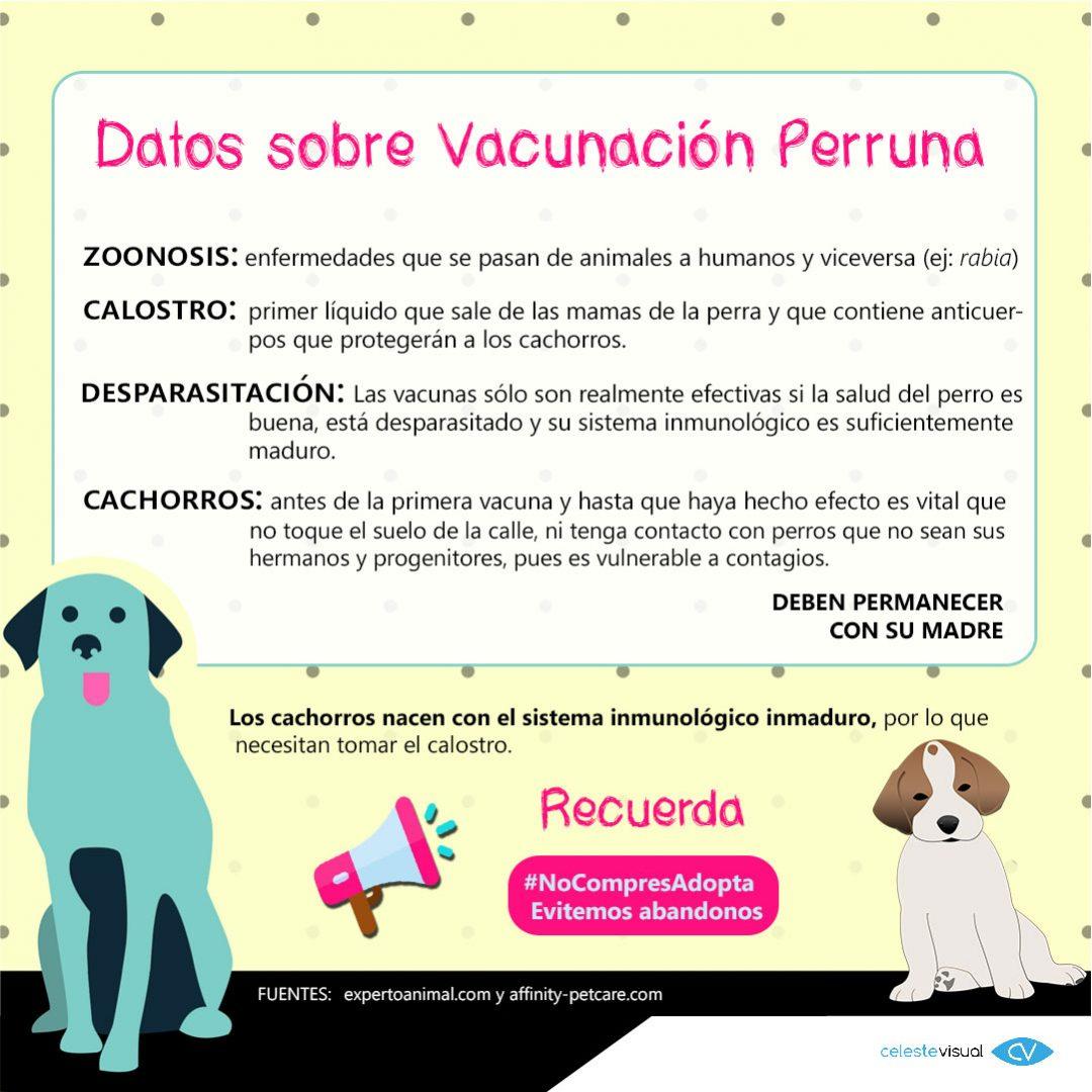 infografía-VACUNAS-PERRUNAS3